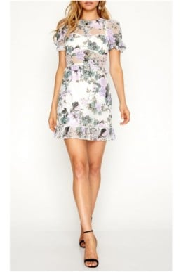ALICE MCCALL So Darling Floral Printed Dress