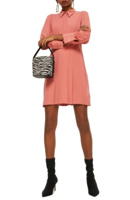 TOPSHOP Pleated Rose Shirtdress