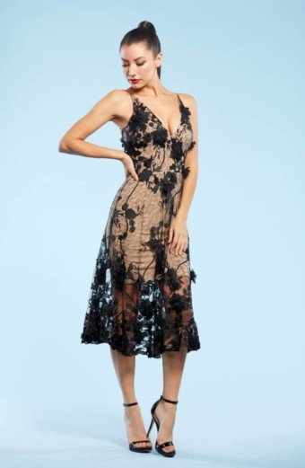 DRESS THE POPULATION Audrey Embroidered Fit & Flare Black Dress
