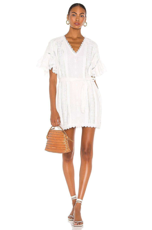 FRAME Voluminous Ruffle Sleeve Dress