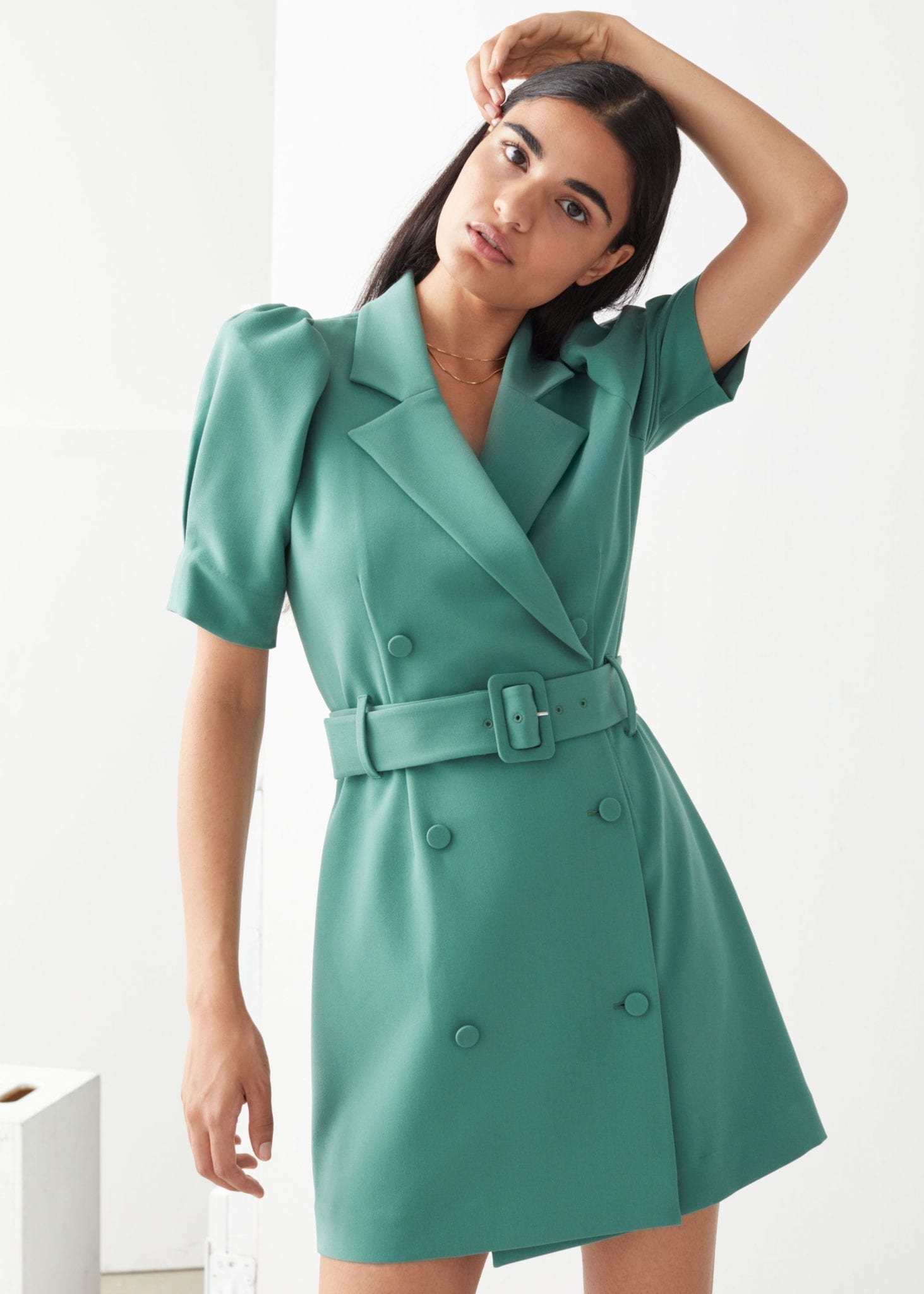 & OTHER STORIES Puff Sleeve Belted Mini Dress