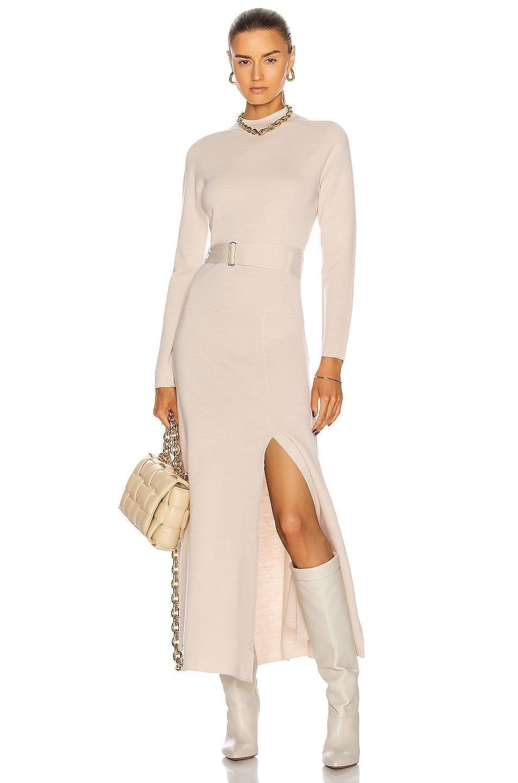 NICHOLAS Mock Neck Long Sleeve Dress